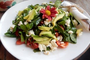 Caprese Salad with Avocado - Physio Direct NZ