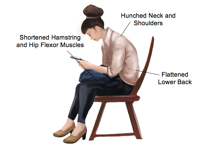 Helpful Stretches At Your Desk Rural Physio At Your Doorstep