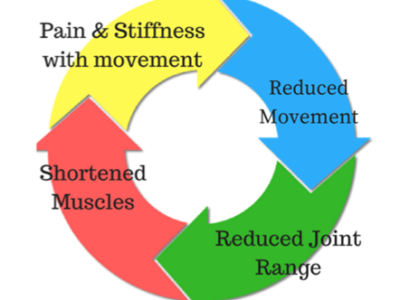 Why Do Joints Become Stiff? - Physio Direct NZ